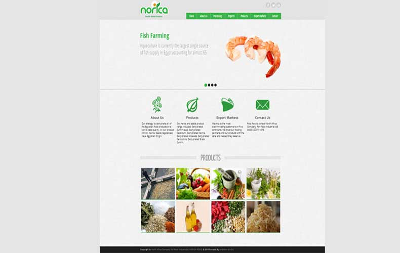 Norica Food Website Design and Development